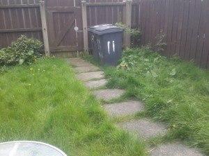 Garden F Before 1